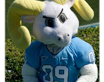 UNC-Chapel Hill Football Rameses