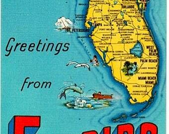 Vintage Florida Postcard - Greetings from Florida (Unused)