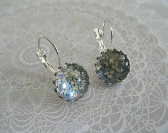 Queen Anne's Lace Atop Dusty Blue Background Beneath Glass-Crown Bezel Leverback Pressed Flower Earrings-Symbolizes Peace-Gifts Under 30