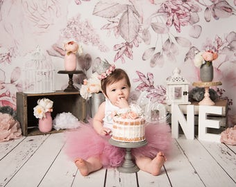 Cake Smash Outfit | Blush Pink 1st Birthday Tutu | Rose First Birthday Tutus | Pink and Silver Birthday Outfit