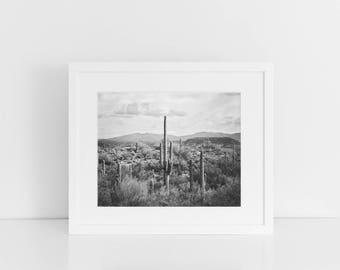 Desert Landscape Picture | Cactus Art | Saguaro Cactus Photograph | PHYSICAL PRINT