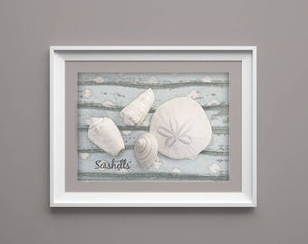 Seashells Photography, Beach Photo, Ocean Photo, Still Life Photo, Seashells, Starfish Photography, Batthroom Wall Art