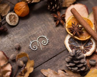 Labradorite moonstone Earrings
