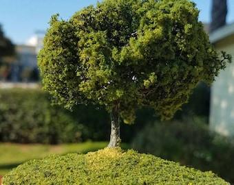Miniature Tree Two