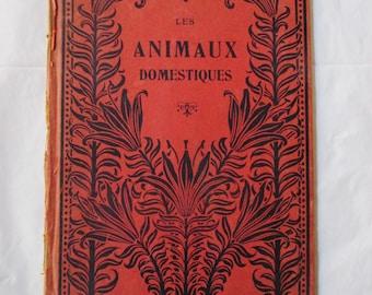 ALPHABET Les Animaux Domestiques (Hachette, Paris), illustrated by Mad Hermet, 1920s