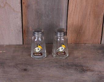 Pair Vintage Baltimore Ravens Glass Decal Salt and Pepper Shakers Sports Memorabilia