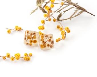 Pressed flower jewelry - Studs - post earrings - Mimosa flower earrings - Resin earrings - yellow floral earrings - eco resin jewelry