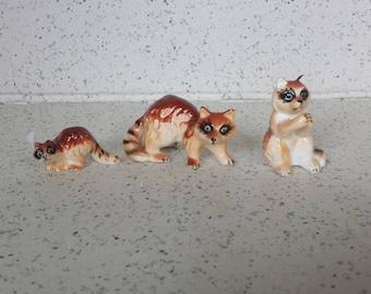 Miniature Raccoon Set