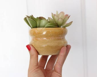 Vintage Planter Pot Succulent Planter Cactus Ceramic Studio Pottery Hand Thrown Stoneware Brown Tan Earth Tones Ceramic Cactus Succulent Pot