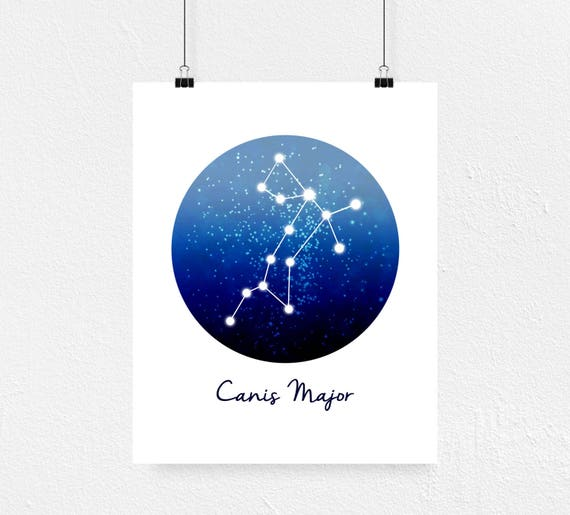 Canis Major Print