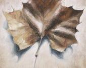 Autumn Leaf Print, Botani...