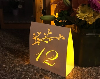 Blossom Branch Table Number Luminaries