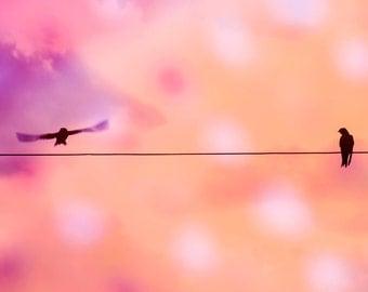 Bird photography, birds on a wire, little girl room decor, fine art photo, bird photo print, home decor wall art, surreal photo print