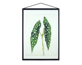 Polkadot plant, Textile print