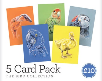 "Greeting Card Pack - ""The Bird Collection"" - A6 Greeting Card Multipack, Pastel Pencil Drawing, Hand Drawn Print"