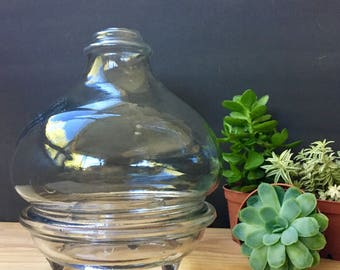 Vintage French Glass Wasp Trap
