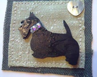 Scottish Terrier with Bling Swarvoski collar