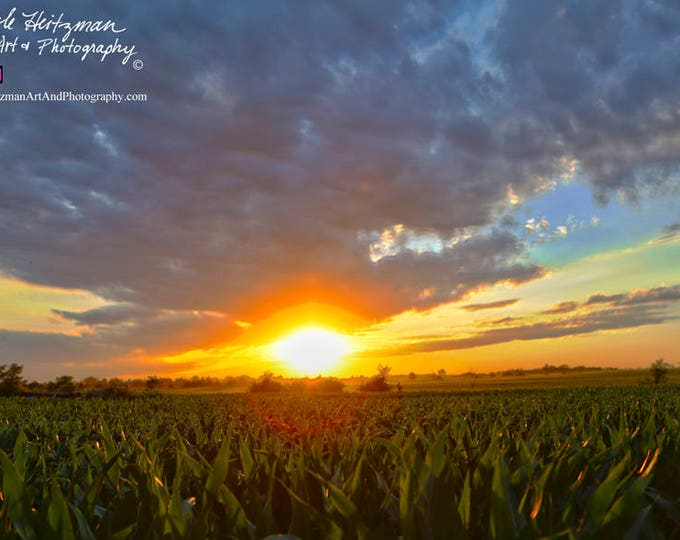 Corn Field Sunset Photography Country Decor Father's Day gift Farmer Gift for Dad Grandpa him Farm Scenery Metal Print by Nicole Heitzman