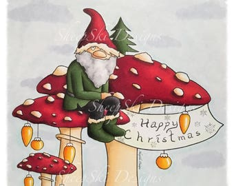Gnome for Christmas - image no 122