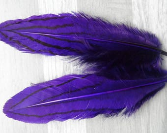 Set of 10 purple dyed silver pheasant feathers