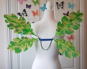 Green Oak Leaf Woodland Wings