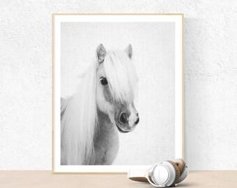 Poney Print, Baby shower gift, Printable Wall Art, baby horse print, Nursery Decor, Black and White Photography, kids room, art prints