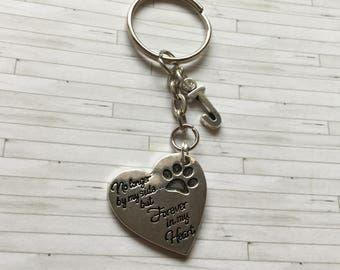 Pet Memorial Keyring, Pet Memorial Gift, Pet remembrance Keyring, Pet Loss Gift, Dog Memorial Gift, Dog Remembrance Gift