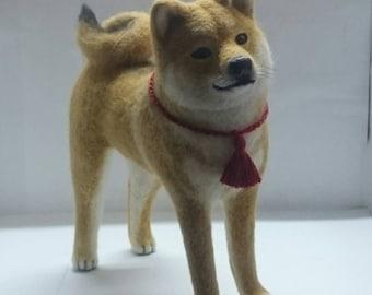 Shiba Inu (Shiba Inu)