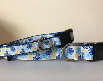 Blue & Yellow Bursts 3/4 inch or 1 inch Collar