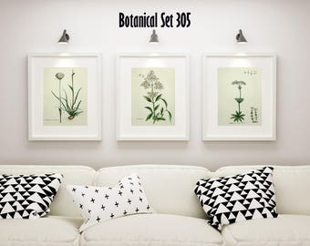 Set of 3 Botanical Prints, White Floral Prints, Cottage Chic Decor, Botanical Art, Country French Wall Art, Housewarming Gift, Farmhouse Art