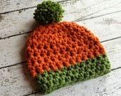 Pumpkin Beanie Crochet PA...