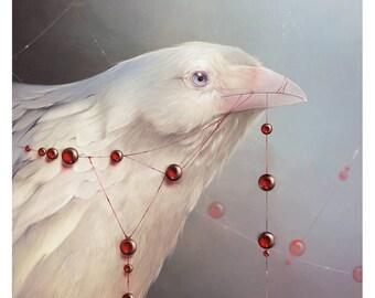 "A4 art print of ""White Shadows: The Crow"""