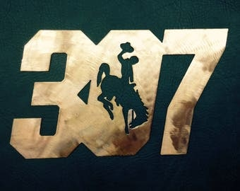 307 Wyoming Cowboys