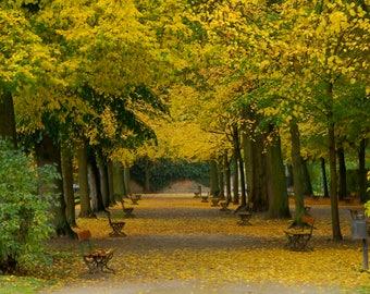 Wurzburg Garden #7, Germany (Horizontal)