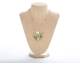 Pearlized Shell Airplant Necklace