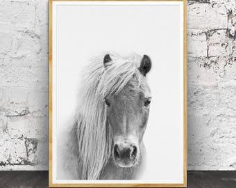 Horse Print, Nursery Animal Art, Nursery Animal Print, Nursery Animals, Nursery Decor, Modern Minimal, Horse  Wall Art, Animal Photo, Horse