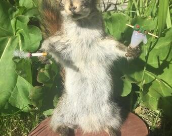 Drunky Squirrel