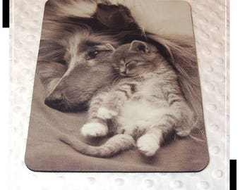 Collie and kitten, computer, desk accessory dog mouse pad, mouse