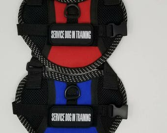 Service Dog In Training vest