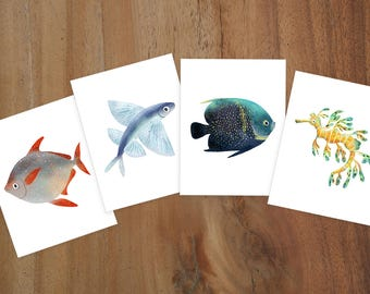 Illustrated Fish Notecards Set of 8 Cards - Flying Fish, French Angelfish, Opah Moonfish, Leafy Seadragon Seahorse
