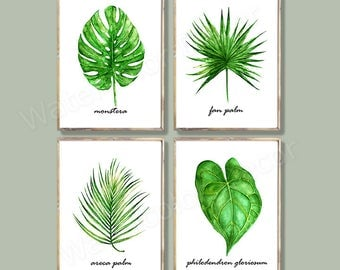 Tropical Leaf Watercolor Art Prints - Set of 4 Green Leaves Prints- Monstera, Fan Palm, Philodendron, Areca Palm Botanical Art Wall Decor