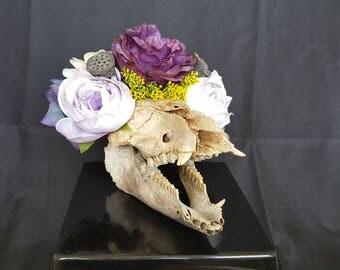 Boar Skull - Purple/Lavender/Grey/Yellow - Peonies/Rose/Hydrangeas/Lotus - Wedding - Halloween - Dia de los Muertos - Goth - Macabre