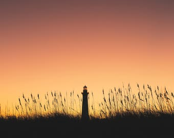 Cape Hatteras Lighthouse, North Carolina, Outer Banks, Beach Photography, National Seashore, Sunset Photography, Seaside, sand dunes, obx