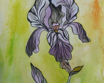 Irises on yellow background - watercolor and ink