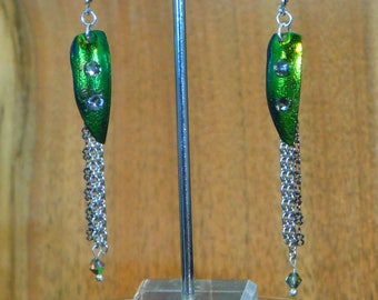 E154-Real Beetle Wing Elytra Earring