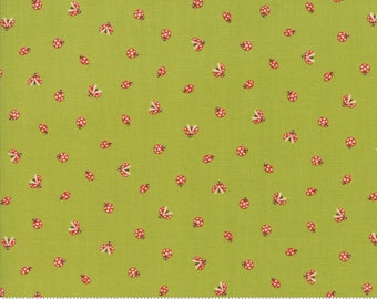 Lucky Day Ladybugs in Clover - Moda cotton fabric - 1/2 yard or more