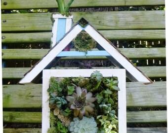 Vertical Garden / Living Wall / Wall Planter for Succulents + Cactus