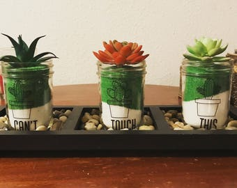 Mason Jar Plant Decor