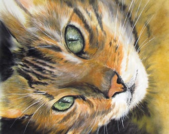Ginger tabby Bengal - pet portrait in pastel - animal Art cat