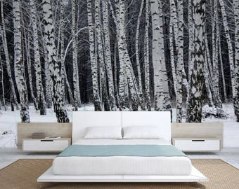 Birch forest wallpaper, birch tree wall mural, birch wall mural, forest mural, self-adhesive, pines wall mural, birch forest wallpaper,